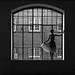 la ballerine by stefanie.k