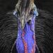 Cassowary by FotoGrazio