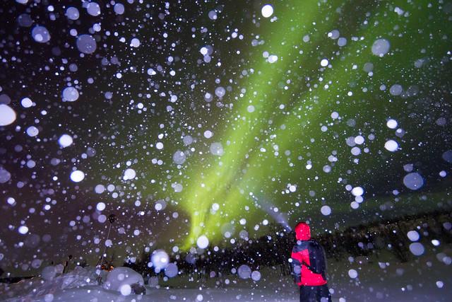 Polarlicht-Reise 2013 - Tag05 - 045