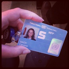 Getting a job with the United Nations – CarolineBach com