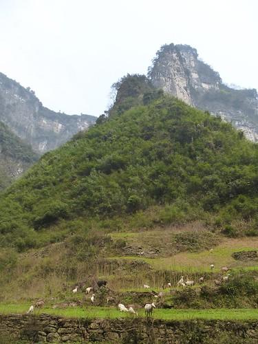 Hunan13-Dehang-ville (59)