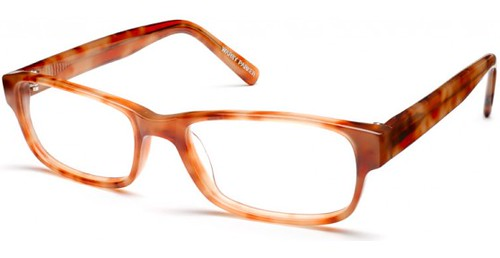 WP fitz-optical-blonde-tortoise-angle-zoom_2