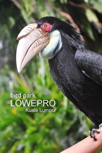 Lowepro 4