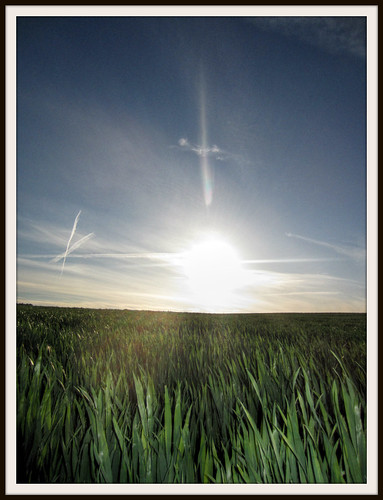 Al sol le van a pinchar by Bishobixente