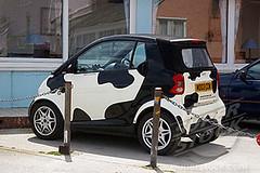 cow smart car a97806_cow