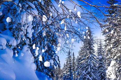 winter sky sun snow cold texture nature weather landscape snowflakes day platinumheartaward blinkagain