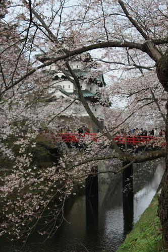 Hirosaki Park May 2013
