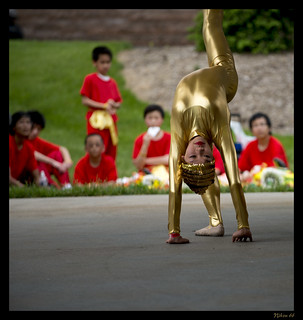 Chinese Culture Days at the Missouri Botanical Garden - Back Flip