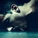 No quiero sentir que soy polvo,que soy muerte,que ya no voy a estar mas acá,ahora. Sé que lo oscuro nunca es tan oscuro,que siempre hay algo de luz y que lo importante es ir hacia ella. by Gustavo Piola Fotografía