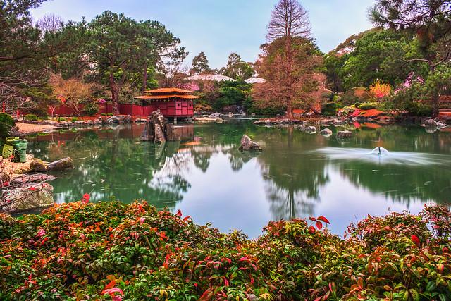 Japanese Garden in Sydney