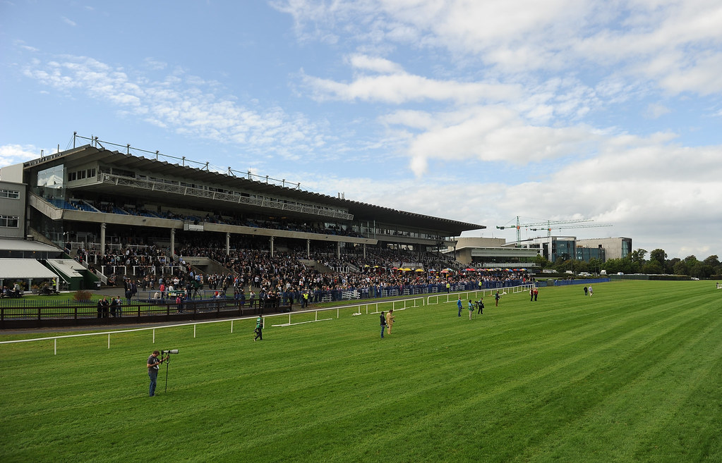 Image result for leopardstown racecourse