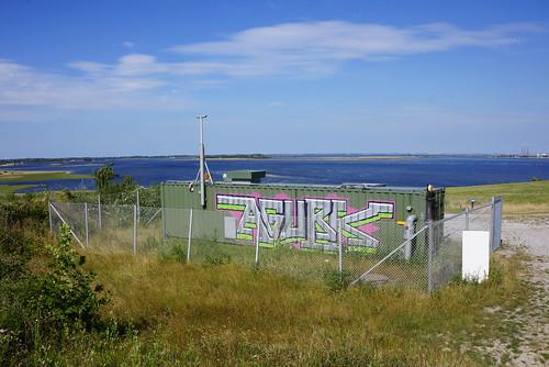 Stige-Oe-Landskab-2014-07-04 (5)