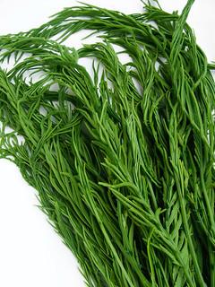 Cha om (Acacia Leaf)