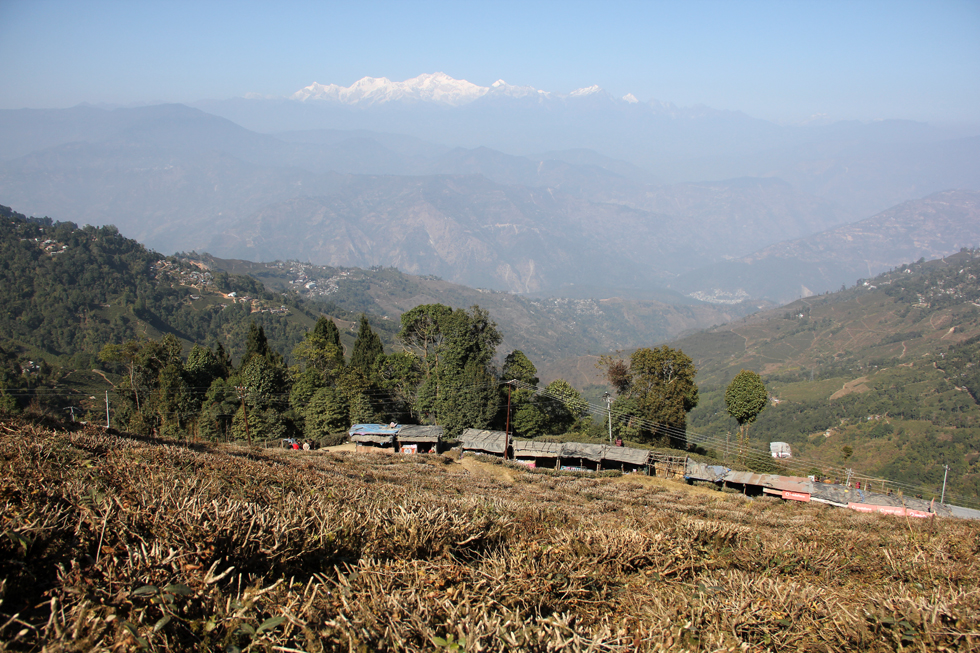 View near Darjeeling, India