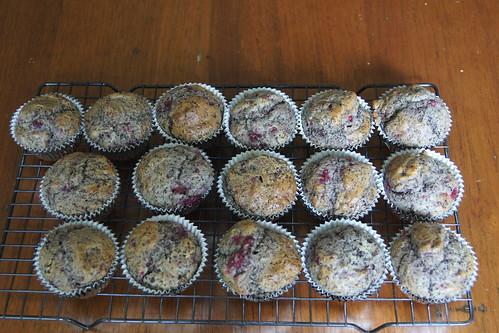 Raspberry and Chocolate Muffins DSC09933