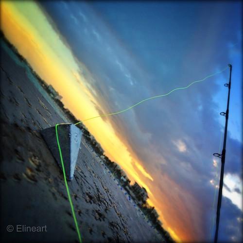 98:365 Fishing by elineart