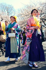 Japanese Springtime - Kawaii 'Comfort & Style'