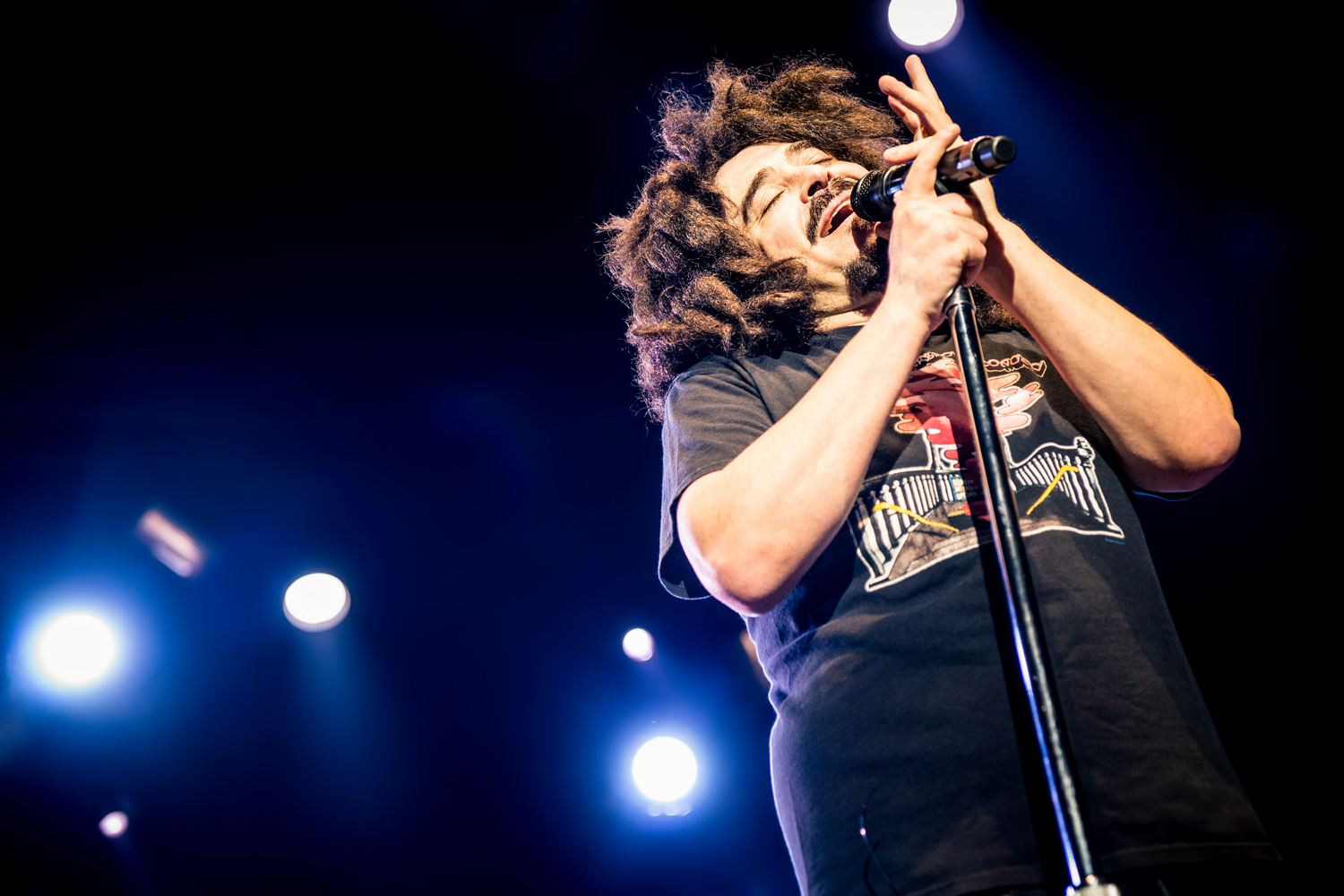 Counting Crows 31