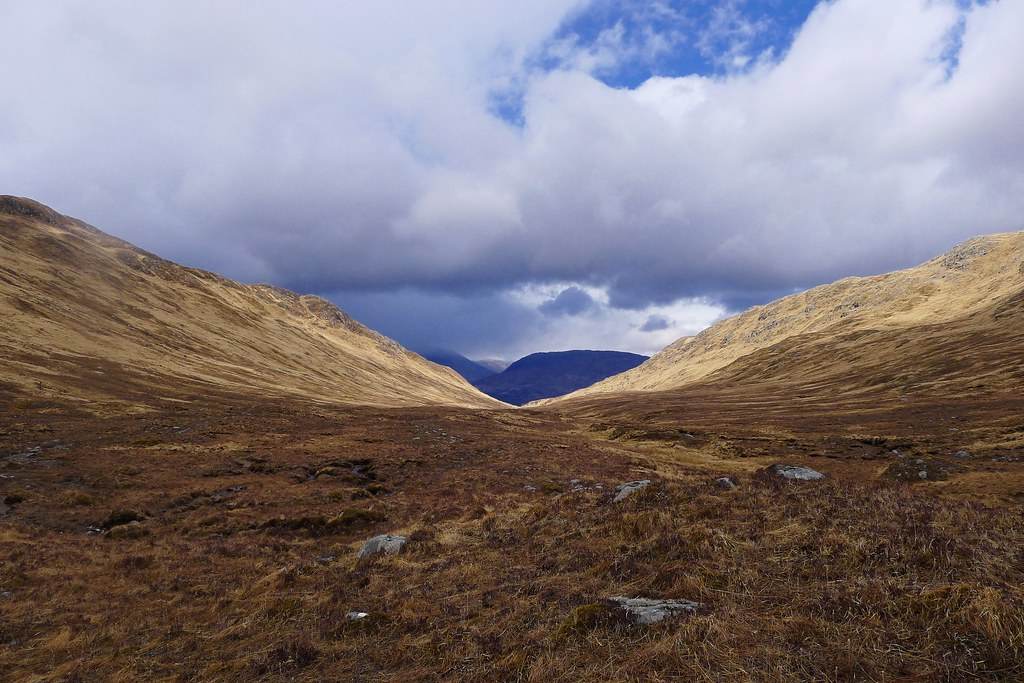 Light in the glen