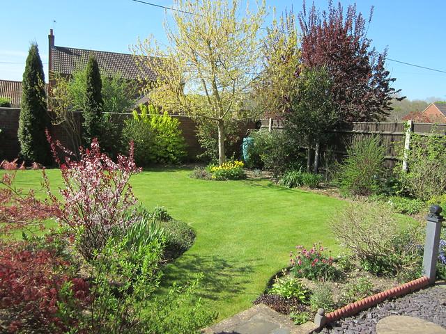 more spring garden (2)