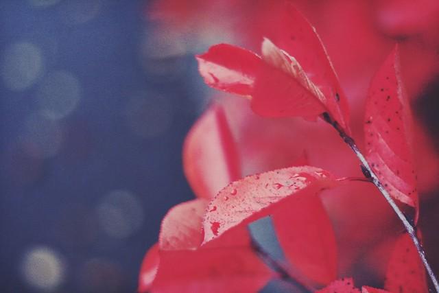 2013-10-09T15-23-30_0