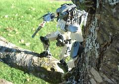 Predator 01