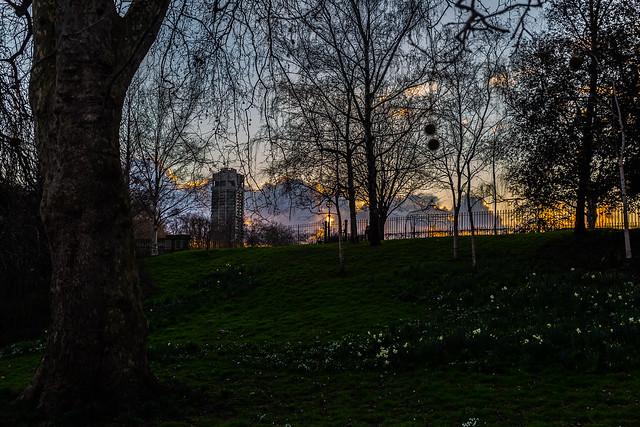 Hyde Park Spring Sunset