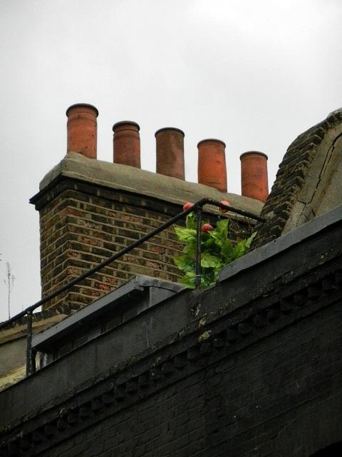London_2013_162