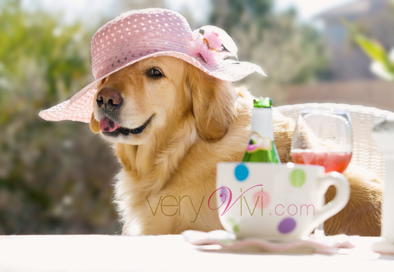Who's In The Mood for a Spring Tea Party?