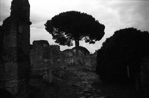 Ancient Street - Ostia Antica