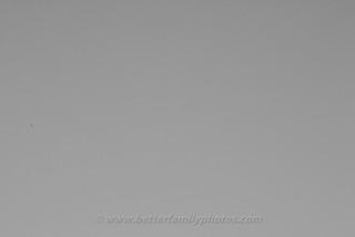 D7000-3074-201304190414