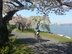 spring in the greenway