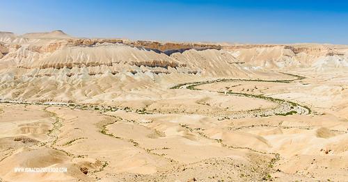 Israel - Negev Desert - Midreshet Ben Gurion 01