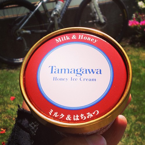 補給は玉川大学農学部が生産加工したアイスクリーム。 とても濃厚です(^^)