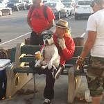 8681861011 b174b18421 q USA 2013, Tag 38   Venice Beach
