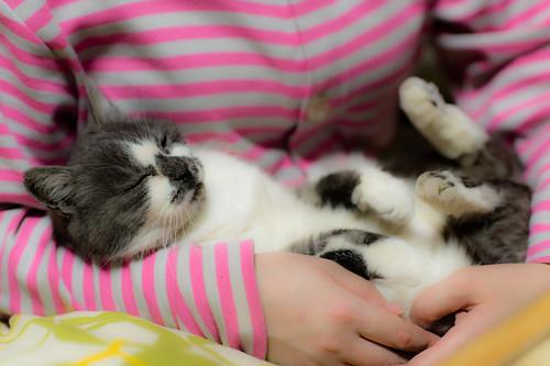 Happy nap
