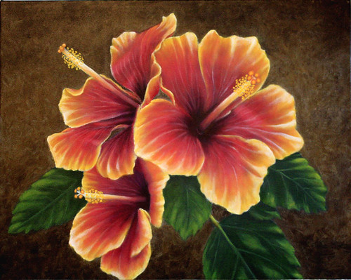 Hibiscus by Sid's art