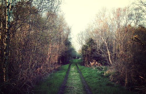 longford newtownforbes uploaded:by=flickrmobile flickriosapp:filter=mammoth mammothfilter