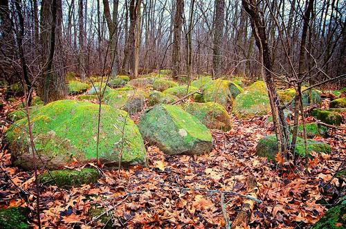 usa nature rain moss boulders indians lichens winneconne johnhenrygremmer