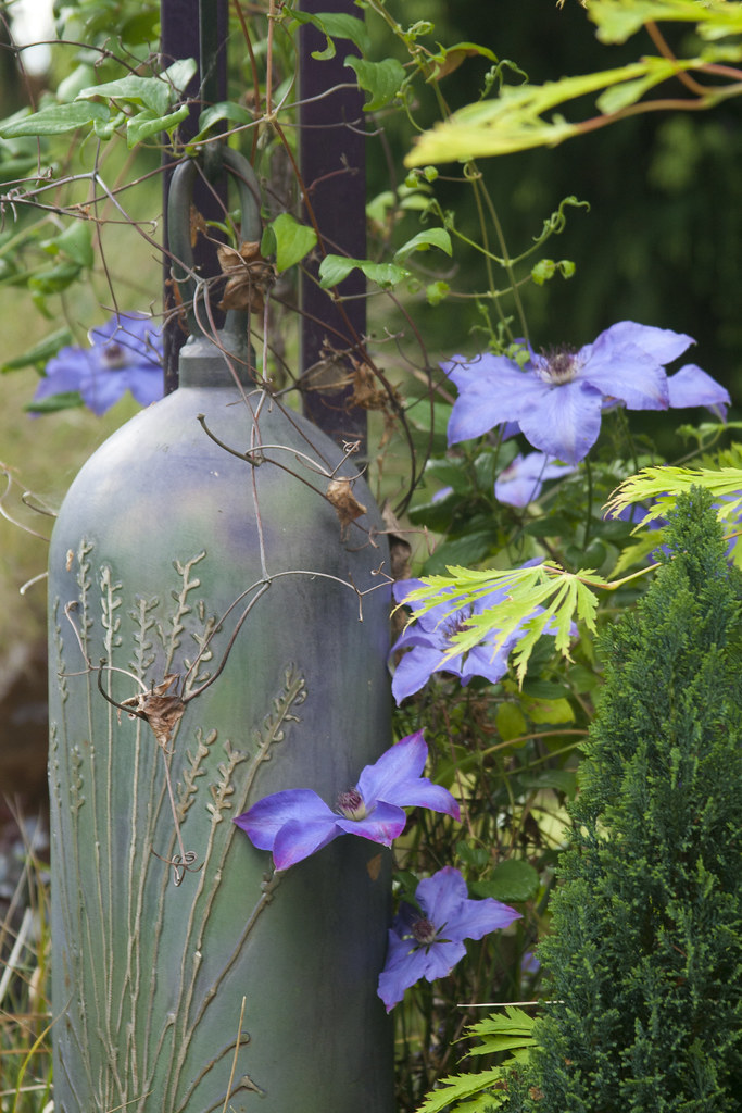 Clematis and Bell