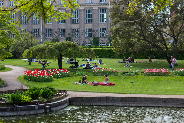 Relaxing in the Park - Copenhagen