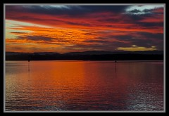 Hayes Inlet reflections-05=
