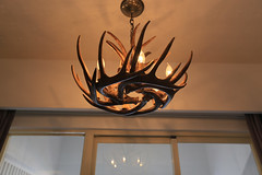 decor, antler, lamp, light fixture, wood, light, ceiling, chandelier, interior design, lighting,