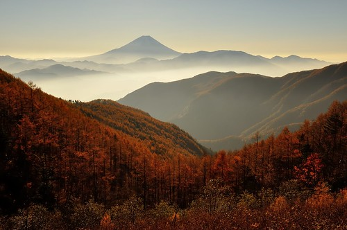 fujisan 紅葉 富士山 mtfuji