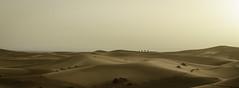 Merzouga Dunes, Sahara, Morocco