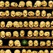 An Afternoon in the Manigotapi Ossuary by Studio d'Xavier