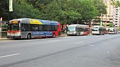 WMATA Metrobus New Flyer Buses