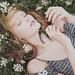field of flowers by Teresa Q