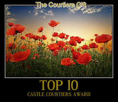CASTLE COURTIERS AWARD
