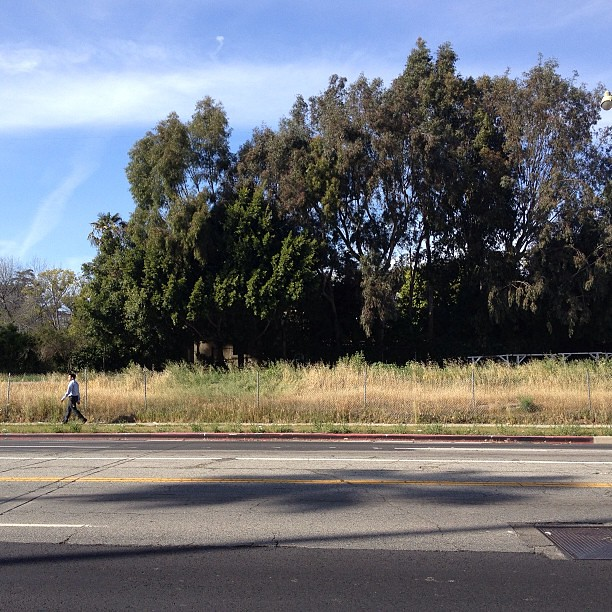 Walkers are lonely on this stretch of Wilshire.